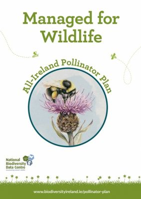 Actions for Pollinators